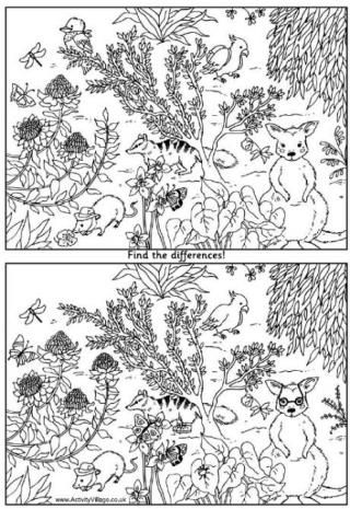 Find the Difference - Our find the difference puzzles are something special. Two beautiful hand-drawn pictures with some small differences between them. Find the differences and then colour the pictures. Eg: Australian animals find the difference puzzle
