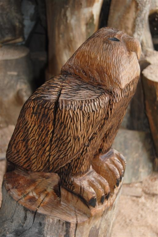 Best images about chainsaw art on pinterest trees