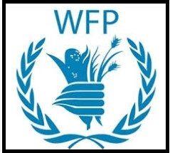 Security Associate G6 Damaturu Yobe (72716) @ UN World Food Programme (WFP)   Security Associate G6 Damaturu Yobe (72716) @ UN World Food P...
