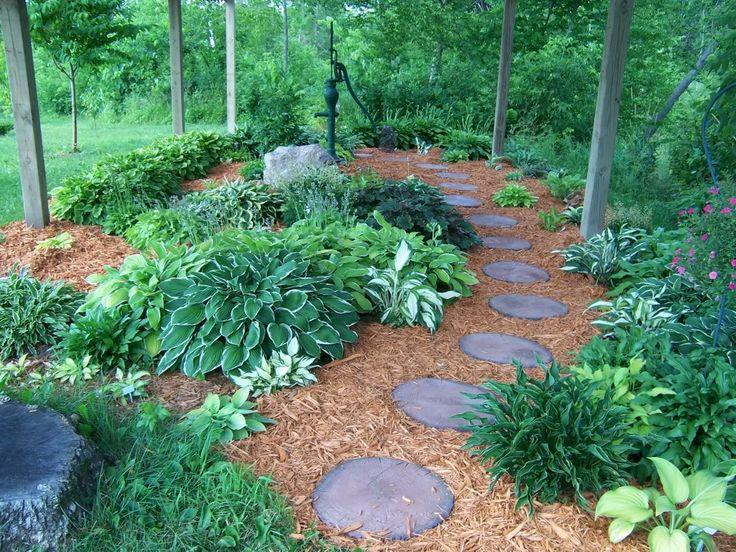 17 best images about hosta garden on pinterest slug for Hosta garden designs