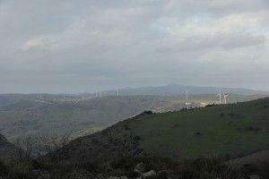 Ecco a voi il paese della Sardegna più ecosostenibile e dove si risparmia di piu, Florinas in provincia di Sassari, 1500 abitanti e tutte le strutture pubbliche sono dotate di pannelli solari e un mini parco eolico, e in più non si paga irpef!