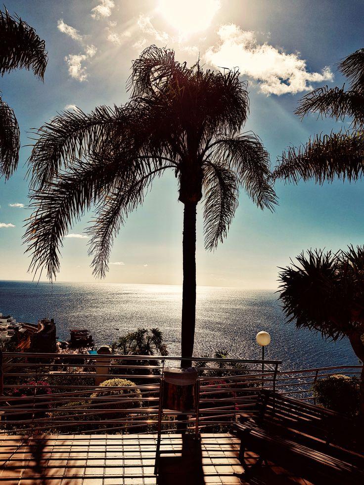 19.. #nature #naturelovers #art #artlovers #artwork #hotel #photography #sun #sea #Twitter #new #photo #photos #pic #pics #trees #tree #beach #amadores #grancanaria #spain #colorful #sky #magic #my #message #love #life #world #memories #story #fantasy #by #birgitta 20..