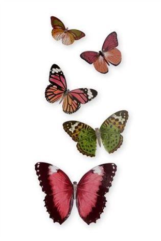 Buy Metal Butterflies Set Of 5 from the Next UK online shop