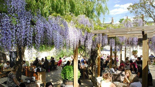 10 Best Beer Gardens in London - Things To Do - visitlondon.com