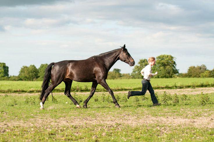 Pferd und Frau rennen