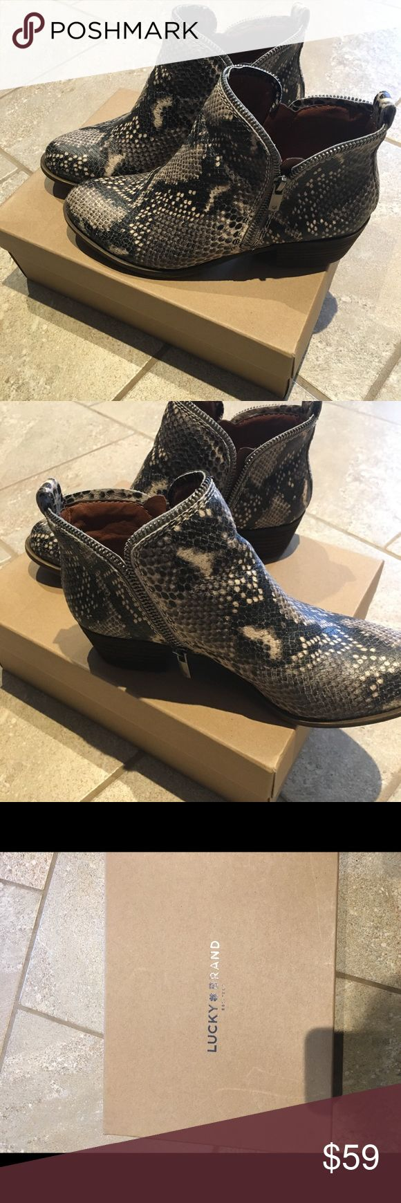 Lucky Brand Python print Leather 2 size zip size 8 Lucky brand booties. Python print leather. Double side zippers with zipper trim around the top. Low heel stacked leather. Size 8. Worn two times in almost new condition. Lucky Brand Shoes Ankle Boots & Booties