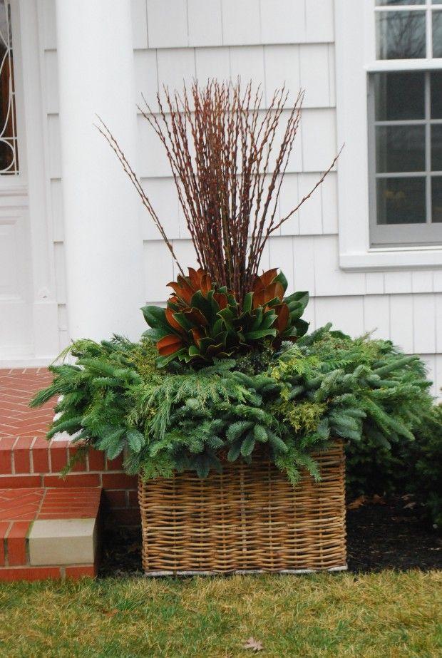 winter-container-arrangement.jpg...smaller and in a half basket for front door.