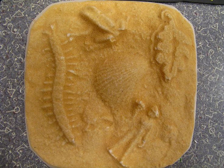 how to make fossils with plaster of paris