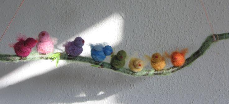 Regenbogen-Vögel