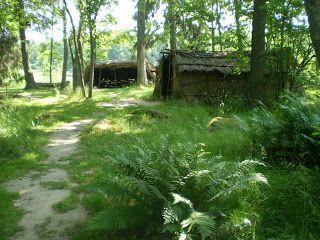 Araiši Archeological Museum-park