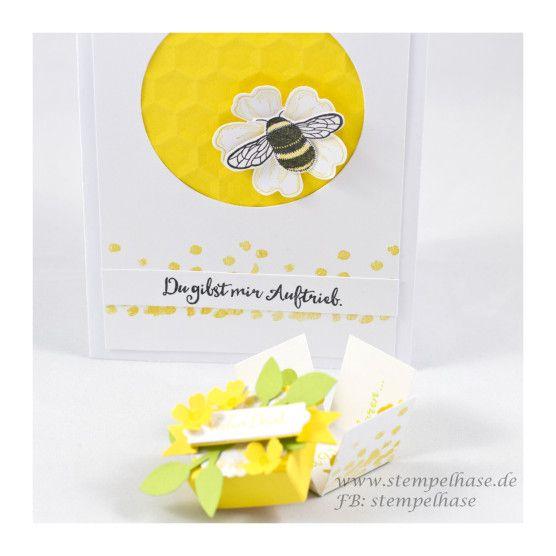 Du gibst mir Auftrieb  eine Karte für jemand Wunderbaren  Möchtest Du die aktuellen Produkte von Stampin´ Up! bestellen, dann melde Dich unter: stempelhase@t-online.de  #li(e)beleien #stampinup #stampin #stempelhase #prägefolder #sechsecke #hummel #bee #flowers #blume #wabe #dankesagen #cards #karten #selbstgemacht #DIY