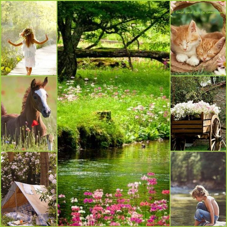 693 best images about collage on pinterest mosaics for Color collage ideas