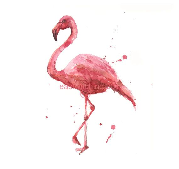 45 Best Plastic Flamingo Decoys Images On Pinterest