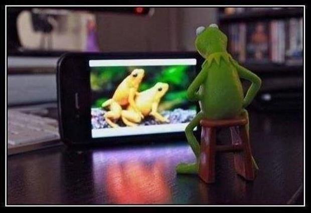 Naughty Kermit Is Into Porn Unbeknownst To Miss Piggy -9266