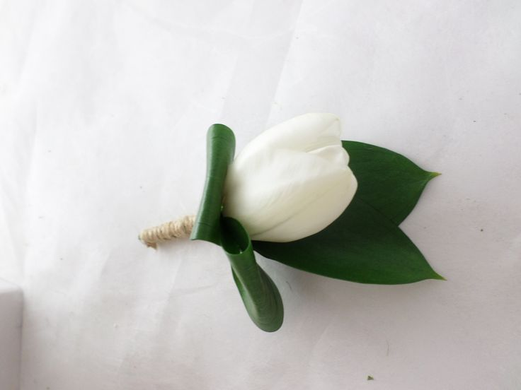 White tulip and ruscus buttonhole created by Florist ilene