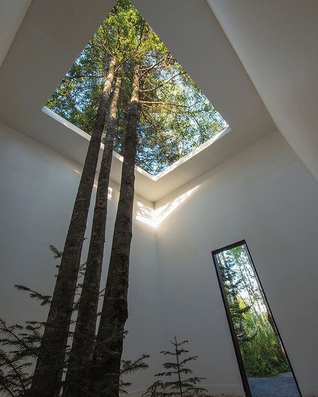 Study nature, love nature, stay close to nature. It will never fail you. -Frank Lloyd Wright.  Courtesy of Nature by Anouk Vogel & Johan Selbing. #architectanddesign