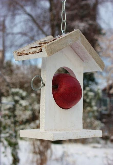 Apple Skewer bird feeder