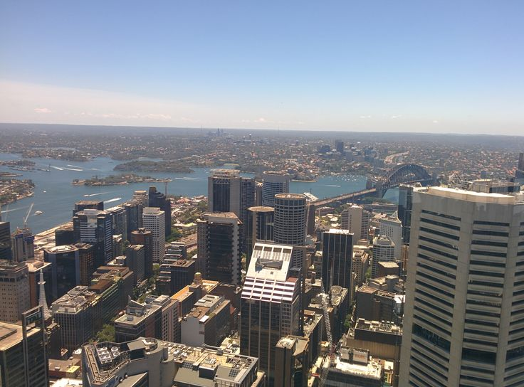 Views of Sydney from the Sydney Tower