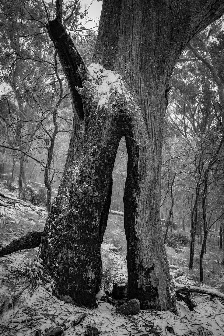 Winter Doorway | by Cameron Semple - http://highandwide.com.au
