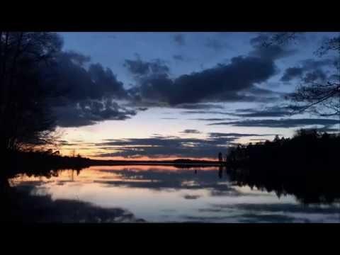 En film om verkligheten : Official Trailer 2017