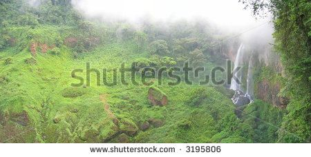 High waterfall in the tropical jungle - Cameroon - Africa - Panorama.
