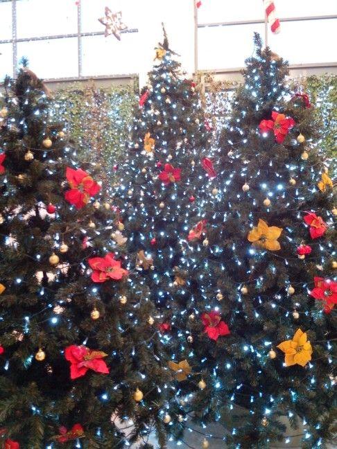 Árbol de Navidad del #CentroComercialMallPlaza en #CartagenadeIndias