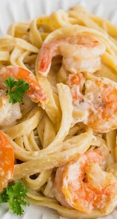Creamy Shrimp Alfredo Pasta ~ a mountain of pasta consumed by rich creamy sauce, and studded with large, tender shrimp... It's a winner. It's also surprisingly easy to make and is ready in under 30 minutes