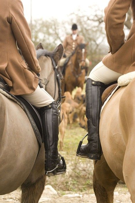What is it about the equestrian world that so fascinates me?