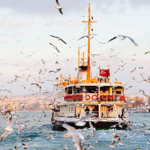 ✿ ❤ Ah! Güzel İstanbul'um!! İstanbul Boğazı'nda vapur ve ayrılmaz parçaları martılar :)) Bosphorus /Turkey