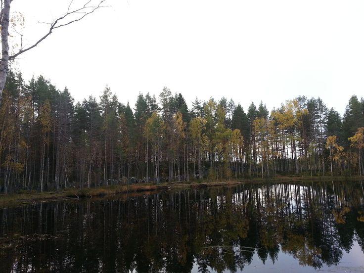 Karjalankierros Lieksan tuntumassa on erävelluskoulutusten näyttämö. Vaelluskohteena erämainen ja rauhallinen. Yhteistyö Timitranlinnan kanssa mahdollistaa laadukkaat oheispalvelut rymille ja vaeltajille.