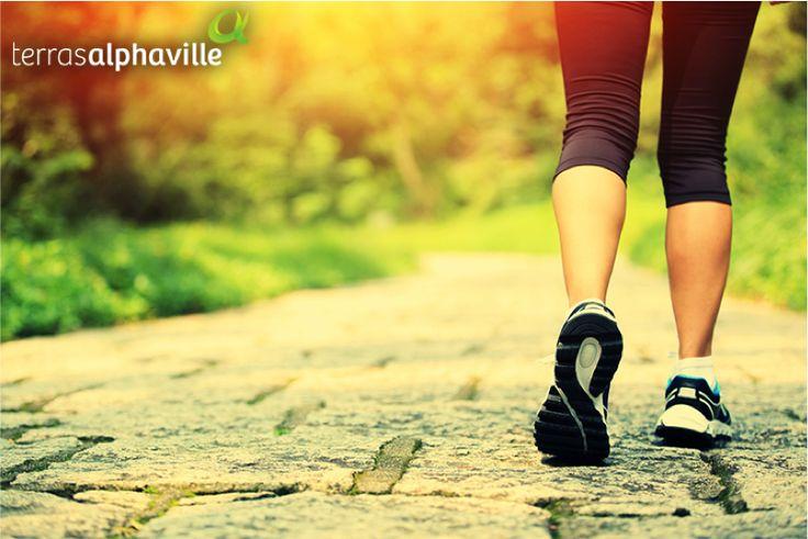 Falta de tempo já não é mais uma desculpa para não praticar alguma atividade física. Uma simples caminhada ajuda a ganhar fôlego e proteger o coração. Que tal adotar esse hábito no seu dia-a-dia?