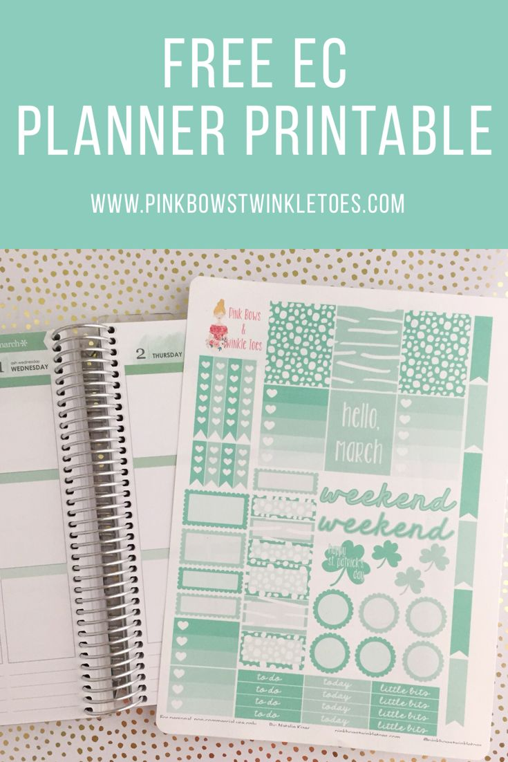 FREE Erin Condren LifePlanner sticker printable - mint green March functional sticker sheet - St. Patrick's Day themed stickers - Free Instant Download - planner inspiration