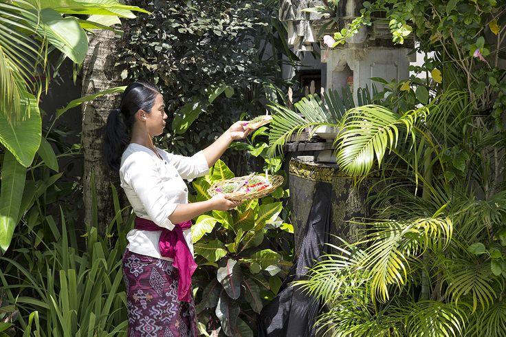 http://prestigebalivillas.com/bali_villas/villa_jemma/2/more_info/ Villa Jemma staff member in the gardens of beautiful Villa jemma Bali