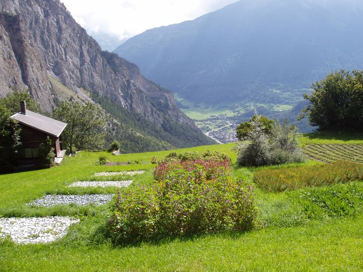 Valmont Phyto-Alpine garden, organic plant culture at 1500m high