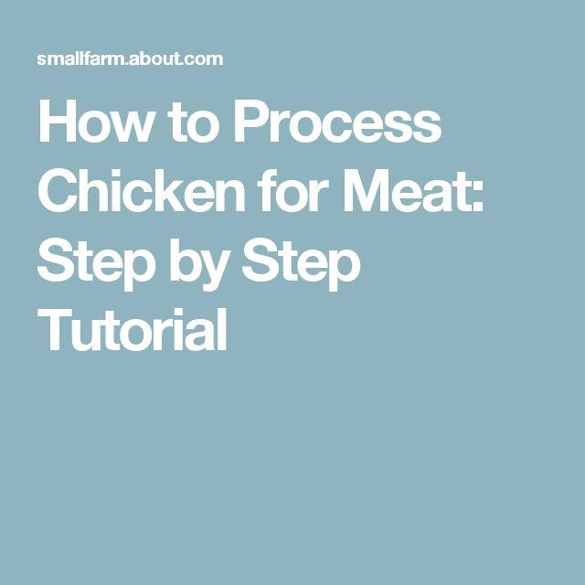 How to Process Chicken for Meat: Step by Step Tutorial