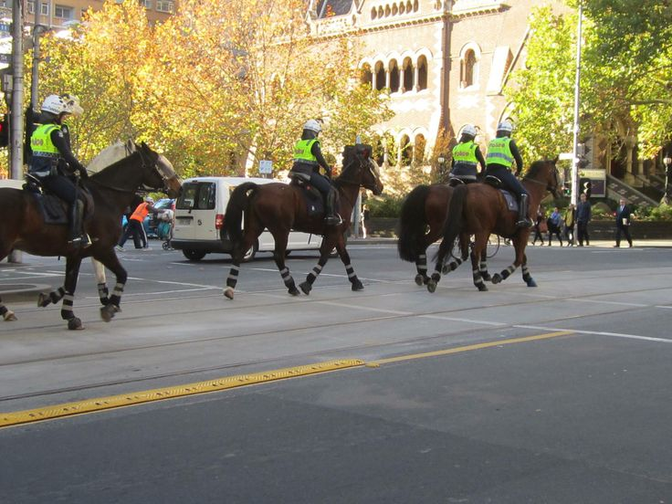 Mounted Police - downtown Melbourne