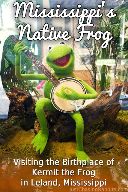 Mississippi's Native Frog: Visiting the Birthplace of Kermit the Frog in Leland, Mississippi   Just Chasing Rabbits