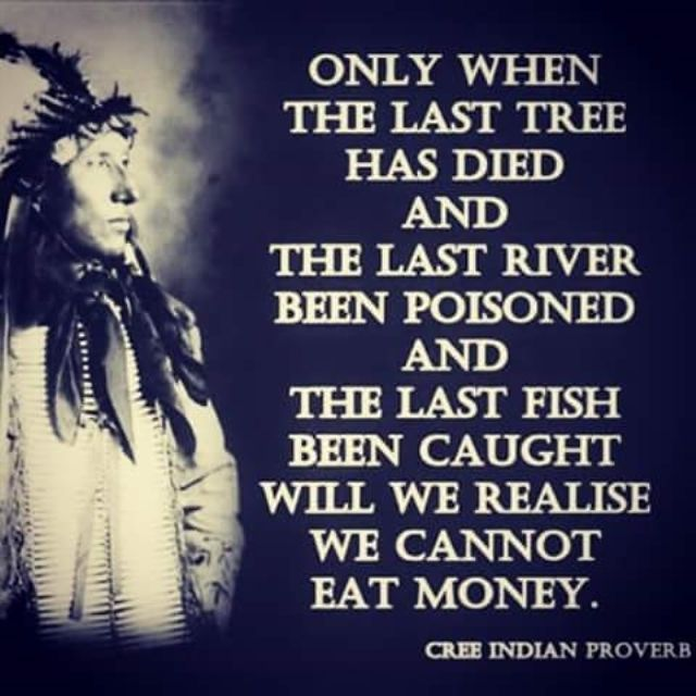 Cree Indian Proverb