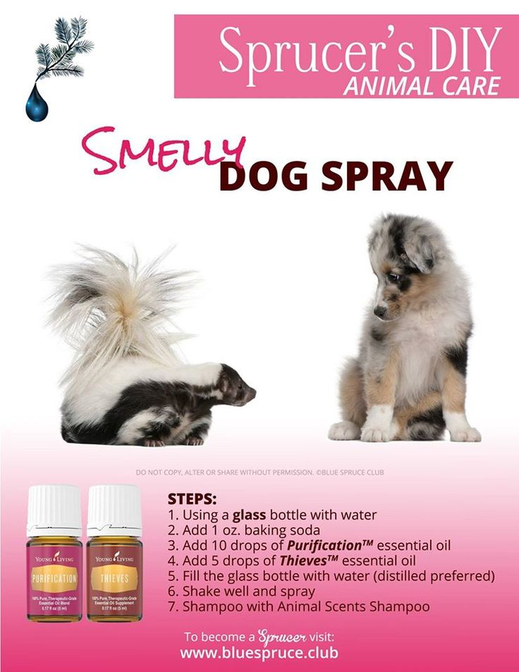 Young Living Essential Oils: Pets.