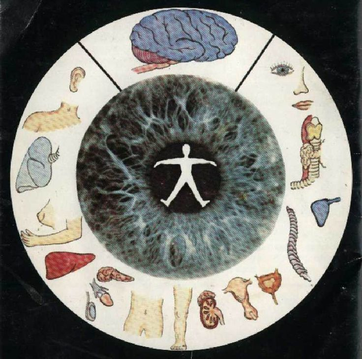 Home - Iridology - What do your eyes say about you and your Health ?