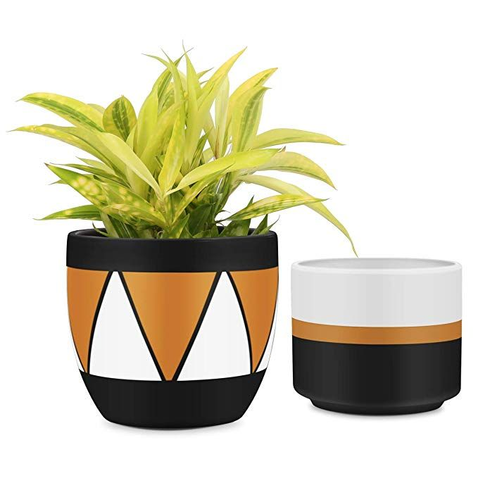 Amazon Com Matte White Black Ceramic Flower Pot 6 Inch Set Of 2 Indoor Planters With Drainage Hole Ceramic Flower Pots Planter Pots Outdoor Indoor Planters