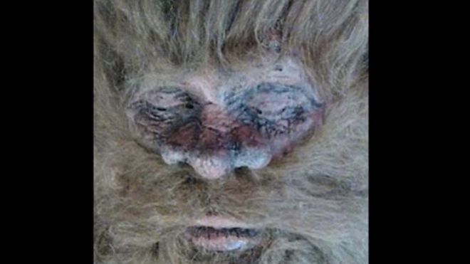 Bigfoot hunter claims to have killed beast and has proof | Fox News