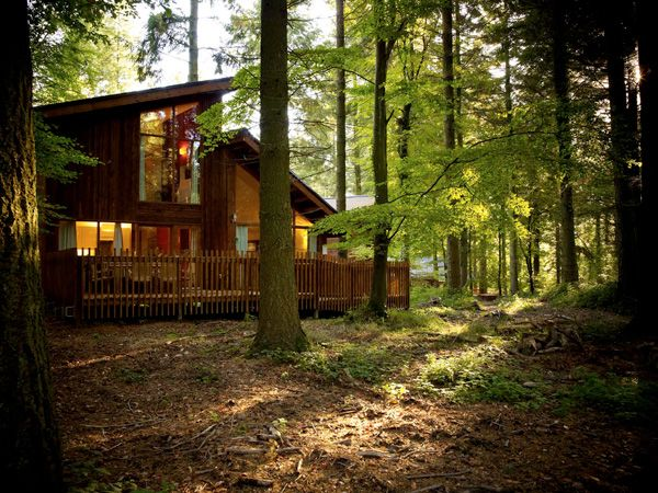 Golden Oak 4 bedroom cabin at Forest of Dean #forestretreat #ukbreak #getaway #hottub