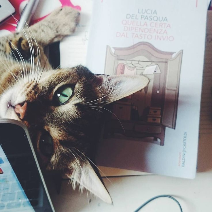 Quella certa dipendenza dal tasto invio, il primo romanzo di Lucia Del Pasqua