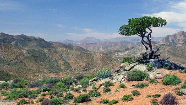 Parcul National Richtersveld (Africa de sud)