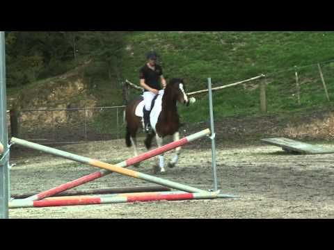 SHOWTYM VIKING: Bareback and Bridleless - YouTube