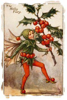 The Ogham Trees - Holly - Tinne