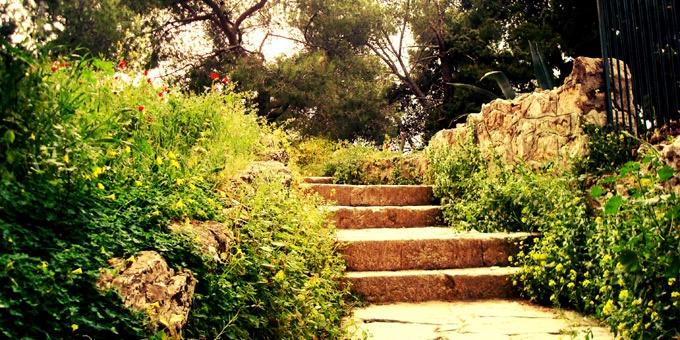Αθηναϊκά πάρκα για να… στρωθείτε