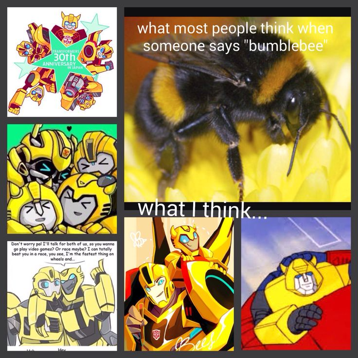 When someone says 'bumblebee'