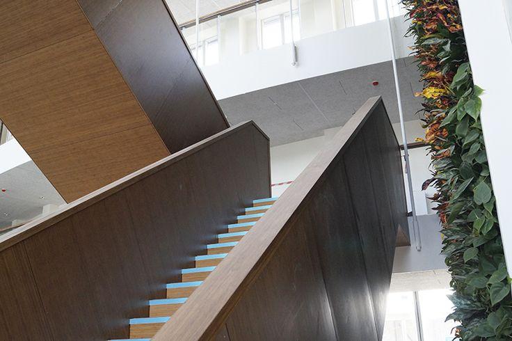 Innovest ved Skjern – et større og særligt bæredygtigt projekt for Ringkøbing-Skjern Forsyning A/S og Ringkøbing Fjord Innovationscenter. Massive facadelister i bambus, flere heraf imprægneret med den 100 % organiske brandhæmmer BURNBLOCK, og MDF fineret med bambus til beklædning af trappe - forhandlet af Keflico A/S. Foto: Keflico A/S.